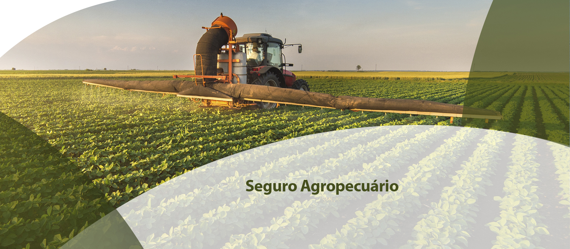 Agropecuário